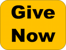 Give-Now-Button-1